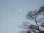 Full Moon in Virgo from the beach